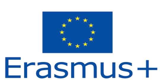 Intalnire online proiect Erasmus+ CLIL4YEC